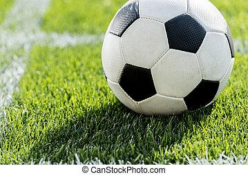 voetbal, op, akker, stadion, positie, afsluiten, hoek, gras, schop, aanzicht