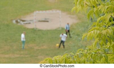 voetbal, spelend, gezin, park.