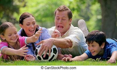 voetbal, vangen, bal, het glimlachen, gezin, het proberen
