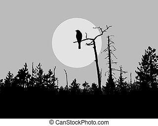 vogel, silhouette, vector, boompje