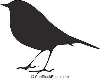 vogel, vector, silhouette, branch., zittende , symbool