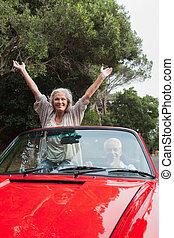 volwassen paar, hebben, rijden, het glimlachen, samen
