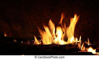 vreugdevuur, hout, zwarte achtergrond, burning