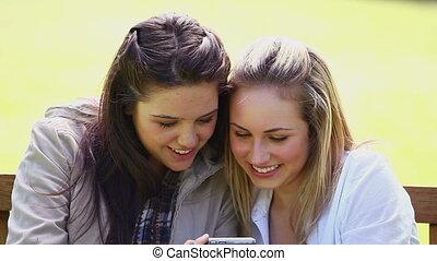 vrienden, digitale , het kijken, het glimlachen, fototoestel