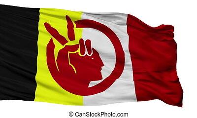 vrijstaand, vlag, seamless, amerikaan indiaas, lus, beweging