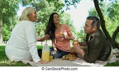 vrolijk, park, picknick, hebben, gezin