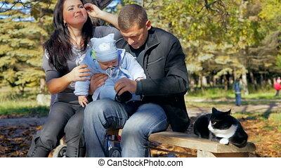 vrolijke , toddler, gezin, kat