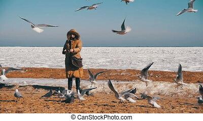 vrouw, bevroren, op, vliegen, seagulls, hongerige , motie, vertragen, sea., ice-covered, voer
