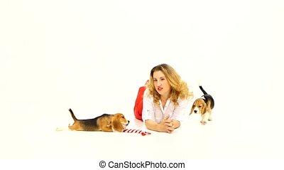 vrouw, het poseren, brak, puppy, studio