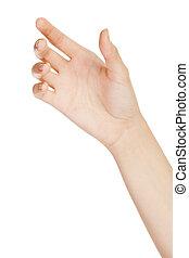 vrouwenholding, achtergrond, vrijstaand, hand, mooi, witte
