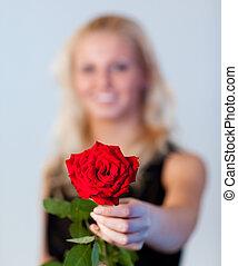 vrouwenholding, jonge, brandpunt, roos
