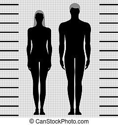 vrouwlijk, mannelijke , voorbeelden, lichaam