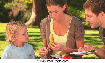 vruchten, aantrekkelijk, familie eten
