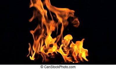 vuur, black , vlam, lus, achtergrond