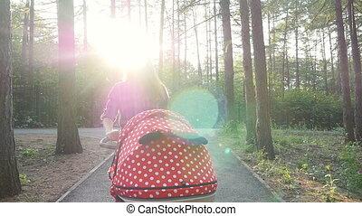 wandelende, baby wandelaar, moeder, park