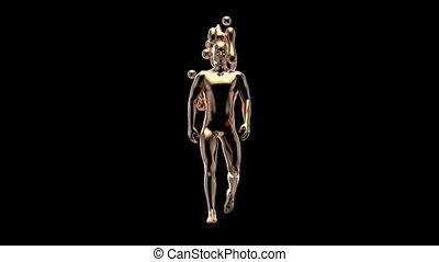 wandelende, concept, 3d, man, xray, anatomie