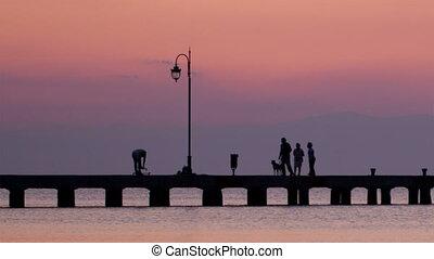 wandelende, familie hond, hun, ondergaande zon , pijler