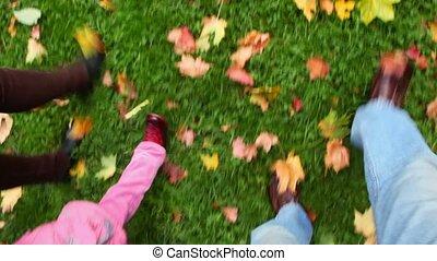 wandelende, gezin, foots, bladeren, herfst, groen gras, aanzicht