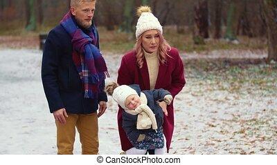 wandelende, jonge familie, park