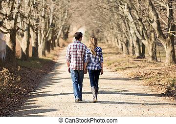 wandelende, platteland, paar, herfst, holdingshanden, achterk bezichtiging