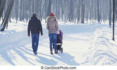 wandelende, winter, gezin, park, jonge, vrolijke