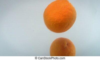 water, beeldmateriaal, het vallen, backgorund., witte , citrus, closeup, assortiment, tegen, vruchten, 4k