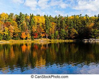 water, landschap, herfst, kleuren, weerspiegelde
