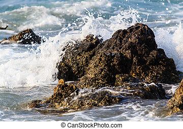 water, verbreking, rots
