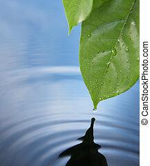 waterdaling