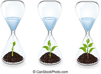 waterglas, clocks, druppels, spruiten