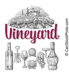 web, fles, poster, ouderwetse , set., vrijstaand, illustratie, vineyard., achtergrond., vector, black , kurkentrekker, glas, witte , etiket, gegraveerde, vat, wijntje