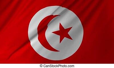 weefsel, tunesië, 1, looping, vlag, 2, structuur