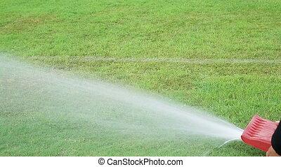 wei, watering