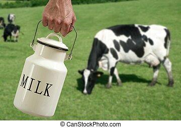 weide, koe, pot, hand, farmer, melk