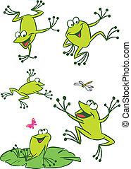 weinig, frogs