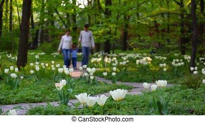 weinig; niet zo(veel), gezin, lente, park, wandelingen, meisje