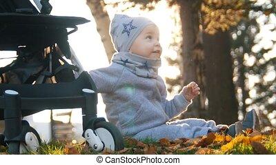 weinig; niet zo(veel), haar, jonge, leaves., son., op, herfst, moeder, baby, afsluiten, spelend