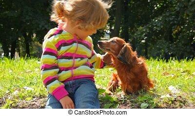 weinig; niet zo(veel), hondpark, meisje, stroking, het verbergen