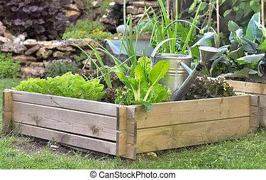 weinig; niet zo(veel), tuin, groentes, lappen, groeiende, groente