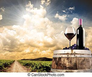 wijngaard, leven, nog, tegen, wijntje