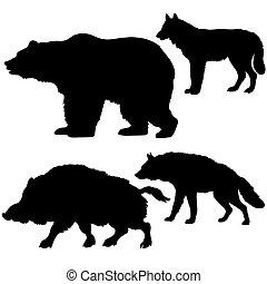 wild, silhouettes, beer, achtergrond, beer, wolf, hyena, witte