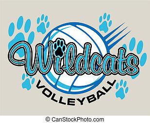 wildcats, ontwerp, volleybal