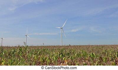 wind, schoonmaken, vernieuwbaar, macht, energie