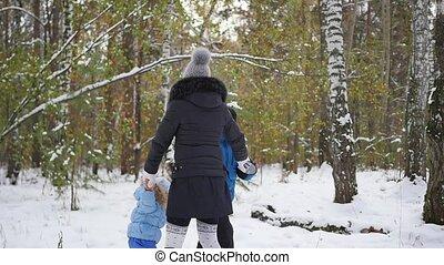 winter, gezin, park, plezier, hebben, vrolijke