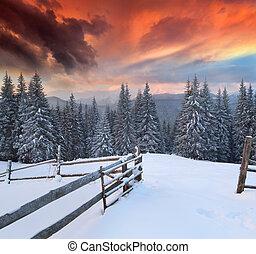 winter, kleurrijke, dramatisch, landscape, bergen., zonopkomst
