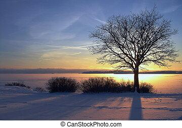 winter, ondergaande zon