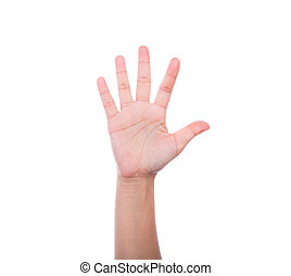witte achtergrond, vrijstaand, menselijke hand