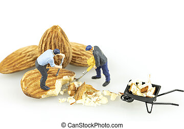 witte , miniatuur, achtergrond., zaden, arbeider, isoleren, afsluiten, amandel, op