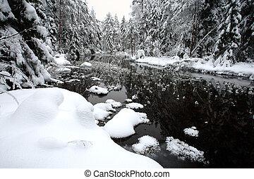 witte , winterlandschap
