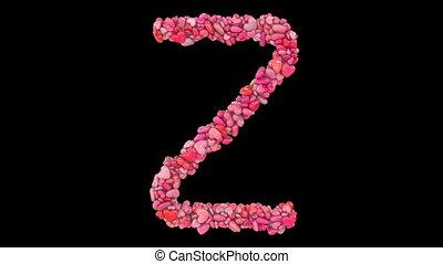 z, dynamisch, hart, valentijn, geanimeerd, roze, uit, partikels, gevormde, brieven